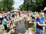 Busy Duck Race!
