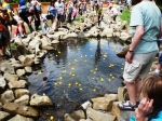 Duck Race Crowd