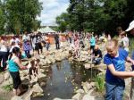 Duck Race on the Fish Ladder