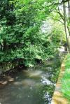 River Sheaf 3